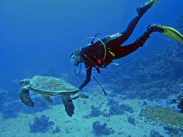 Introductive course of diving for beginners in Cyprus